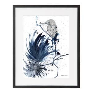 kingfisher_frame_PP